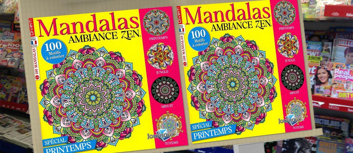 Mandalas Ambiance Zen N°13